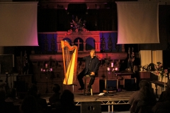 2016-10-08-harp-on-wigth-festival